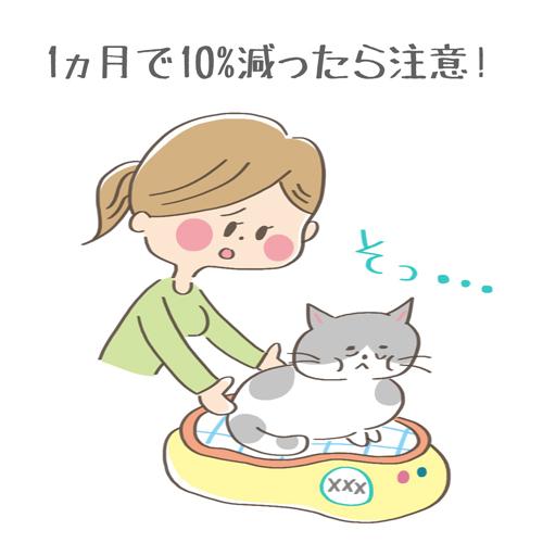 元気がなくて体重が減少した猫のイラスト