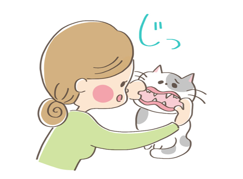 元気がない猫の口の中をみる飼い主のイラスト