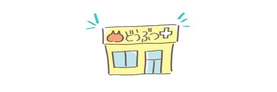 猫の匂い対処法、病院に行くイラスト