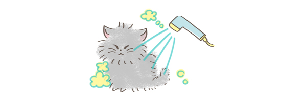 猫の匂い対処法、シャンプーをしてあげるイラスト