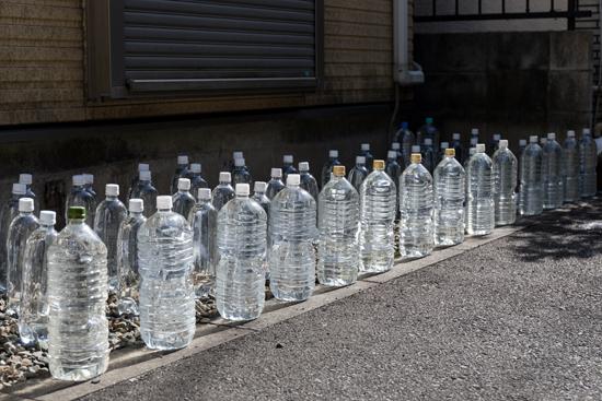 大量の猫よけペットボトル写真