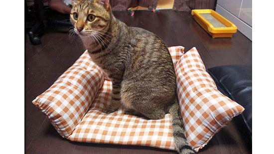座布団の手作り猫ベッドの作り方4