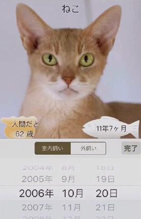 ニャンコいくつ?愛猫の年齢を計算して写真で保存!画面