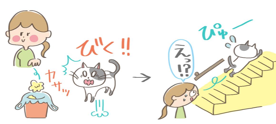 猫のびっくりエピソード1のイラスト