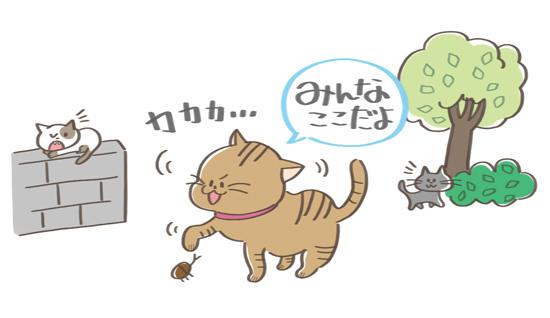 居場所を知らせている猫のイラスト