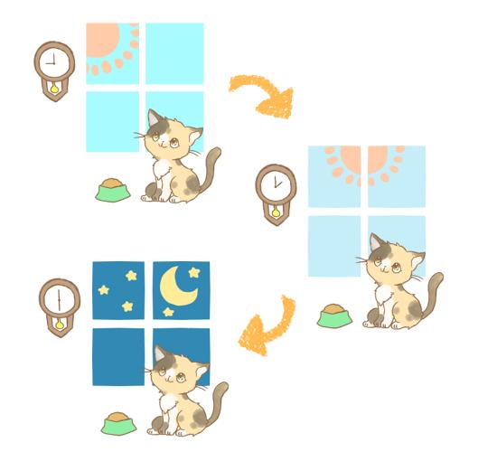 猫の生活リズムのイラスト