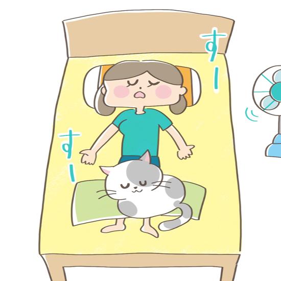 飼い主の足の上で寝る猫のイラスト