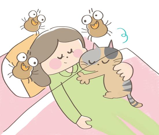 ダニと寝る猫のイラスト