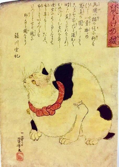 鼠よけの猫の画像