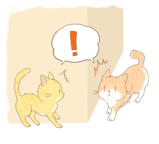 鉢合わせする猫たちのイラスト