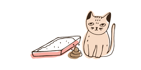 猫の糞尿トラブルのイラスト
