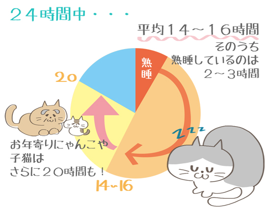 猫の睡眠時間のグラフイラスト