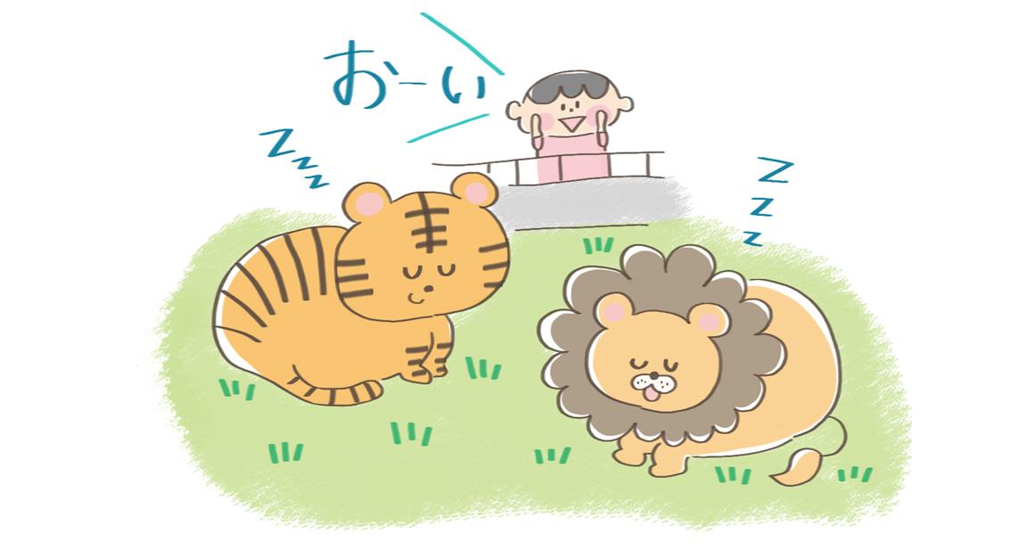 トラやライオンといったネコ科の動物の睡眠イラスト