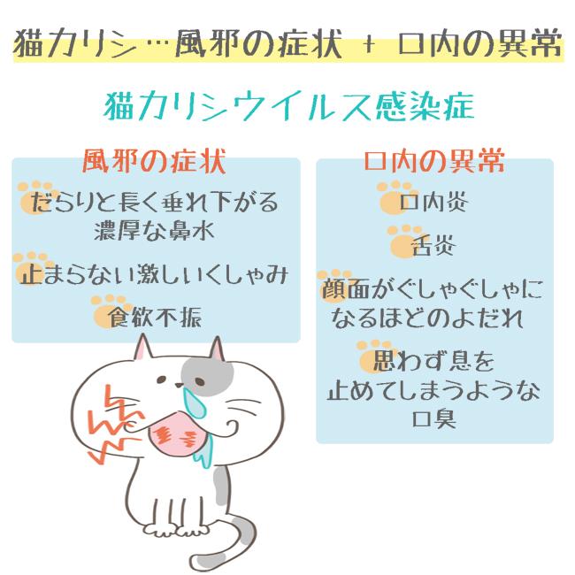 猫カリシウイルス感染症の症状イラスト2