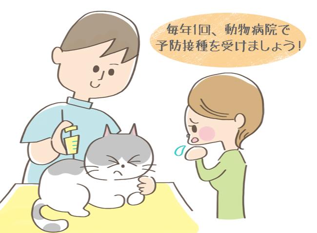 猫カリシウイルス感染症の予防接種のイラスト