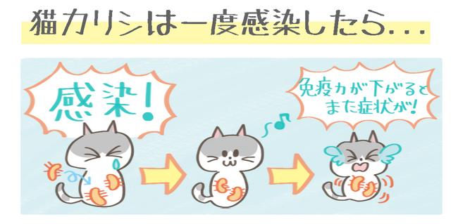 猫カリシウイルスのキャリア猫イラスト
