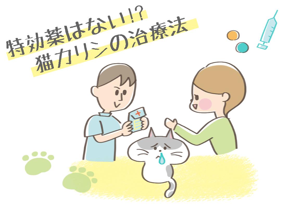 猫カリシウイルス感染症の治療イラスト