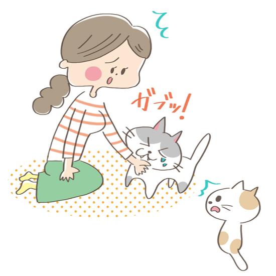 やきもちをやいて飼い主さんを噛んでしまう猫のイラスト