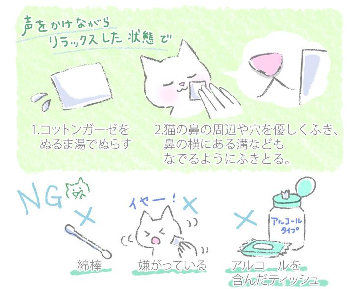 猫の鼻づまりのお手入れの方法のイラスト