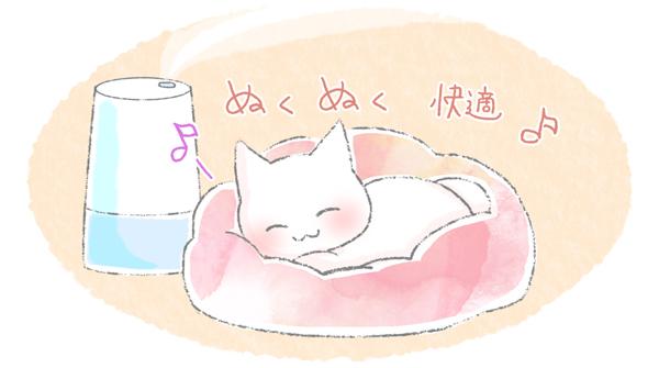 猫の鼻づまりのお手入れの方法のイラスト2