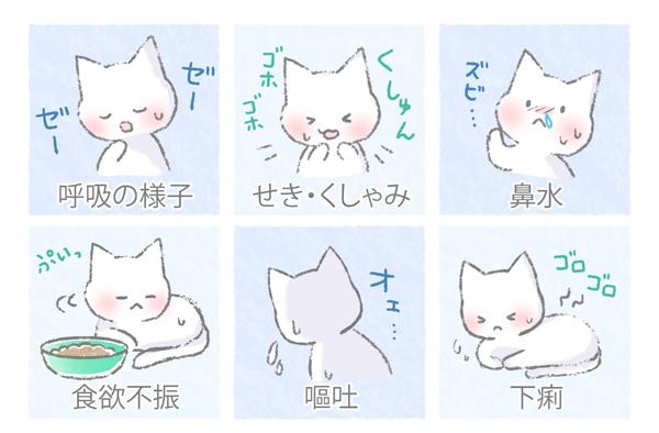 猫の風邪の症状イラスト