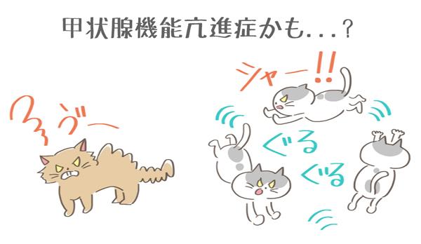 甲状腺機能亢進症で興奮している猫のイラスト