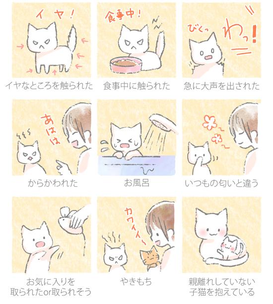 猫が怒る理由のイラスト