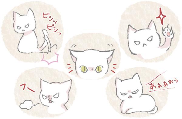 猫の怒っている時のサインのイラスト