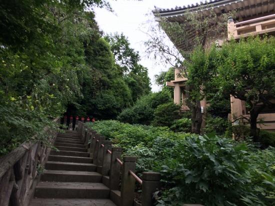 薬王院の階段の写真
