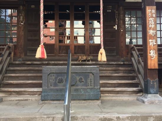 太宗寺の本殿と猫の写真