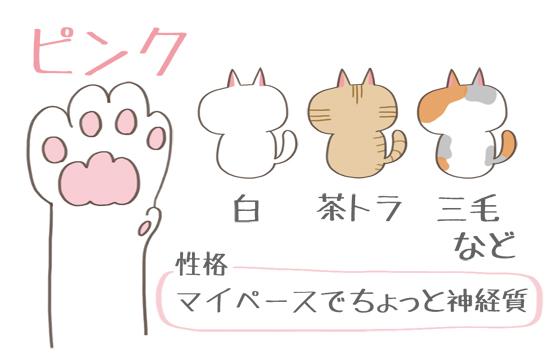 ピンク色の肉球の猫の特徴イラスト