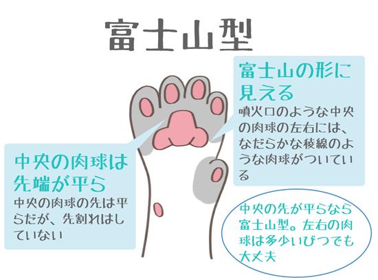 肉球が富士山型の猫の特徴