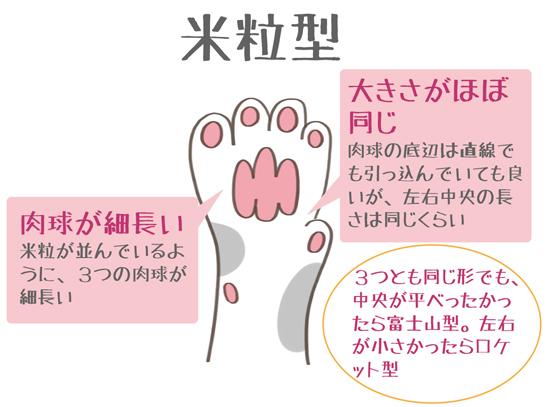 肉球が米粒型の猫の特徴