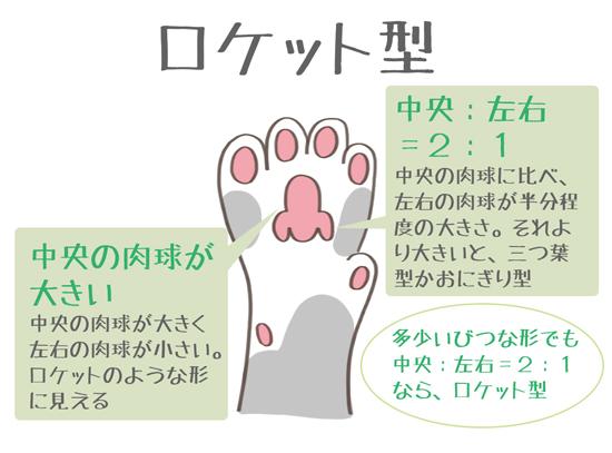 肉球がロケット型の猫の特徴