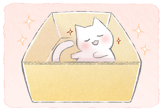 猫が段ボールを好きな理由のイラスト