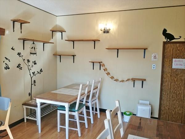 猫カフェめおまるけのカフェスペースの写真1