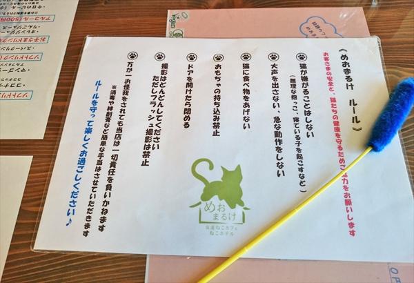 猫カフェめおまるけのルール表の写真